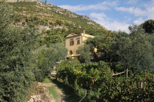 foto Agriturismo Antico Casale Colli Di San Pietro (Amalfi)