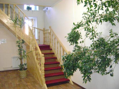 Picture of Hotel Galchonok at Ulitsa Alexeya Tolstogo