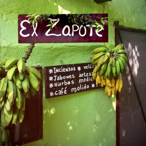 describe the place of the house on zapote street