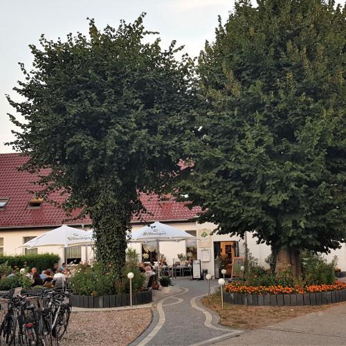 Hotels Mecklenburg Vorpommern Corona