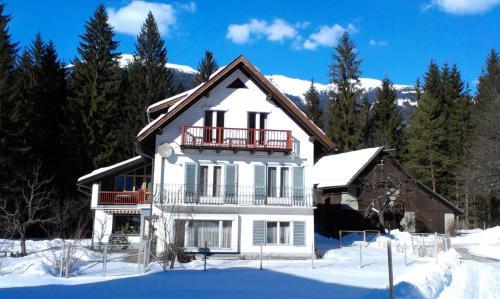 Haus zur Klamm - Großes Apartment mit 1 Schlafzimmer und Balkon
