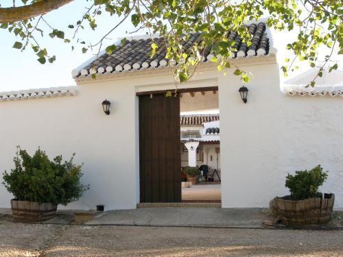 Borreguero