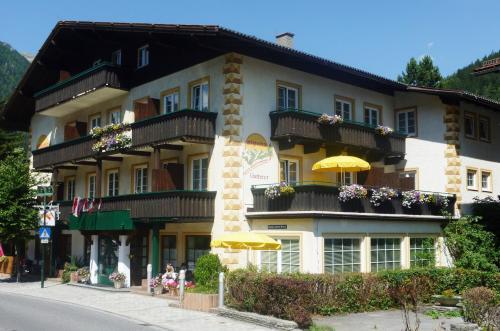 Alpina Appartements - Apartment mit 1 Schlafzimmer und Balkon - Typ C1