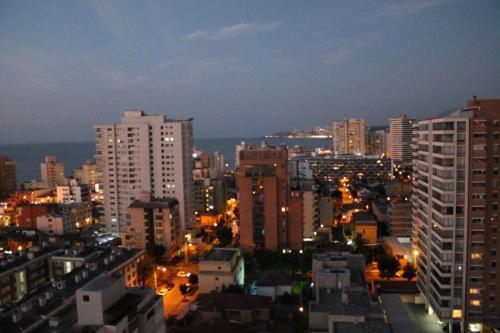 M Montt Viña front view