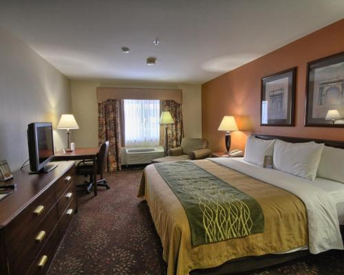 Hotel Rooms In Okemos Mi
