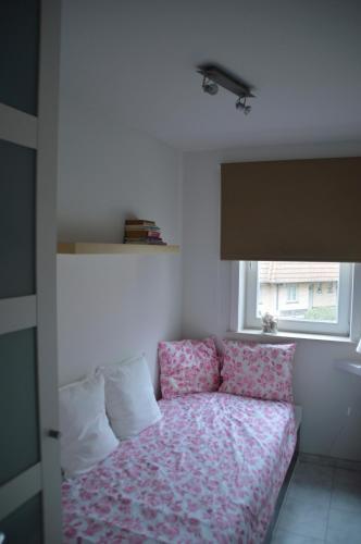 Apartment Alicia