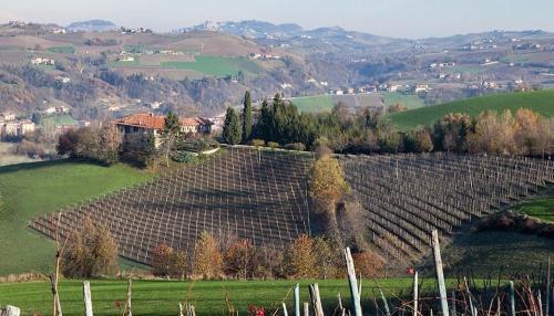 foto Agriturismo Minaldo (Dogliani)