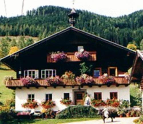 Neudegghof - Superior Apartment (4 Erwachsene)
