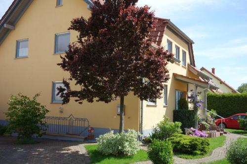 Antjes Ferienwohnung Flonheim