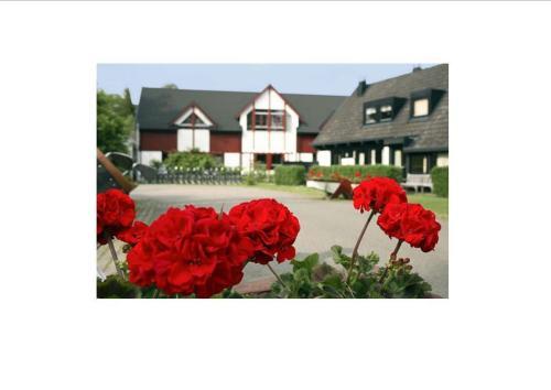 Råbocka Lodge - Klitterbyn