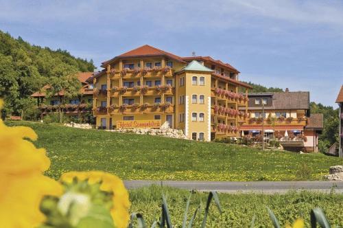 Отель Hotel Sonnenblick 0 звёзд Германия