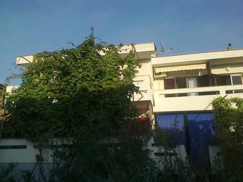 Guesthouse Nihada