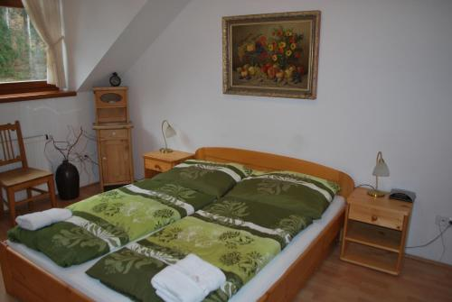 Hotel Polanka