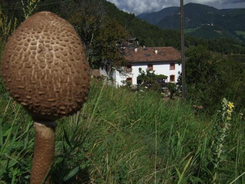 Gruberhof
