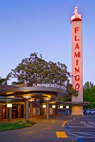Flamingo Conference Resort And Spa