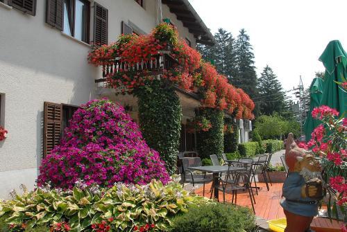 Guesthouse Pri Štefanu front view