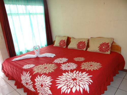 Picture of Sloth Backpackers Bed & Breakfast