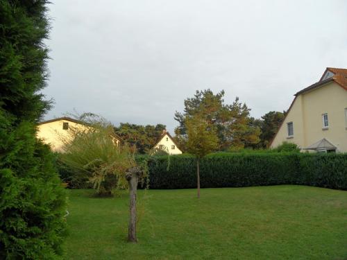 Ferienwohnungen Gartentraum & Sonnenstrahl photo 18
