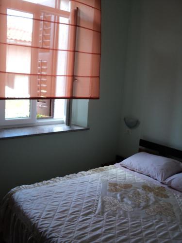 Apartment Mandrac