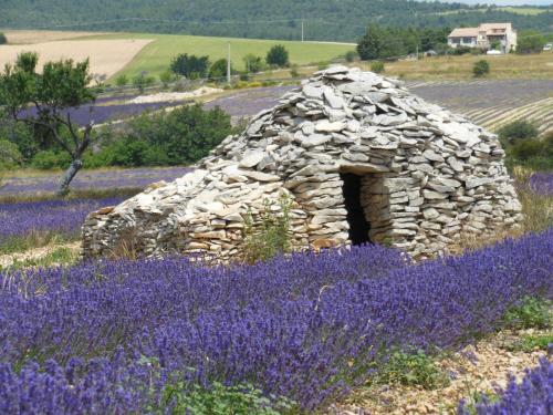 Domaine Lafayette, Loriol-du-Comtat