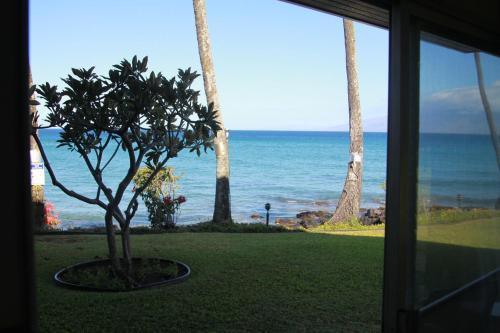 Polynesian Shores #126