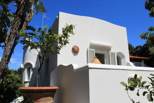 foto Villa Marinella (Ischia)