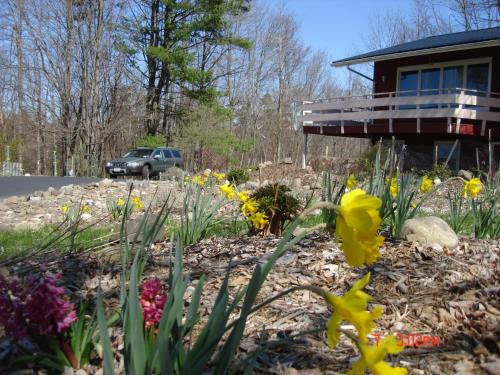 Ithaca Vacation Houses