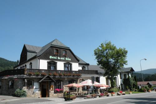 Picture of Hotel Lesní dům