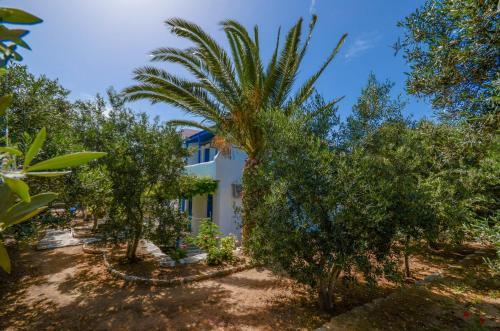 Picture of Golden Beach Studios