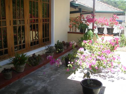 Streamy View Homestay