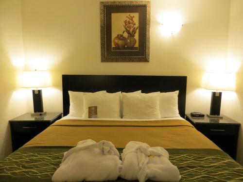 Picture of Comfort Inn & Suites Downtown Edmonton