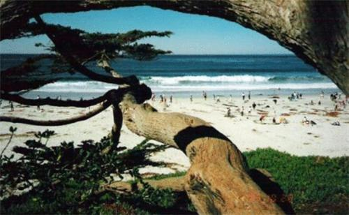 Photo of Blue Door Cabin Hotel Bed and Breakfast Accommodation in Carmel-by-the-Sea California