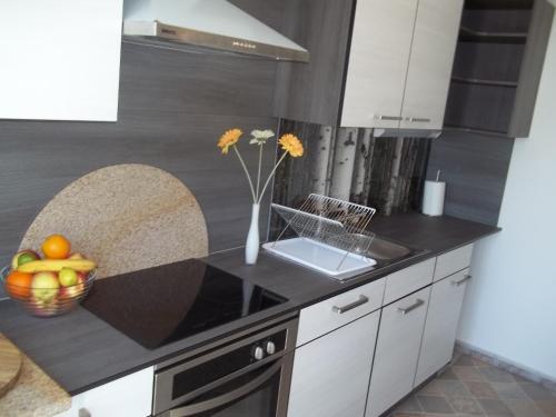 Apartment Silva