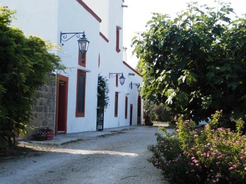 foto Casolare Muzio B&B (Rivabella (Gallipoli))