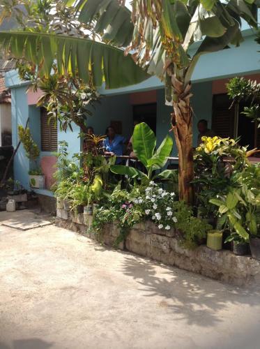 Find cheap Hotels in Cape Verde