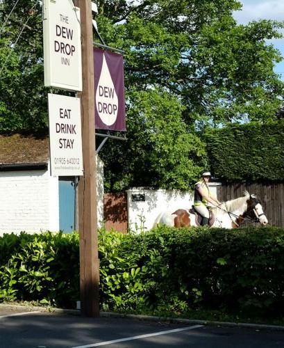The Dewdrop Inn