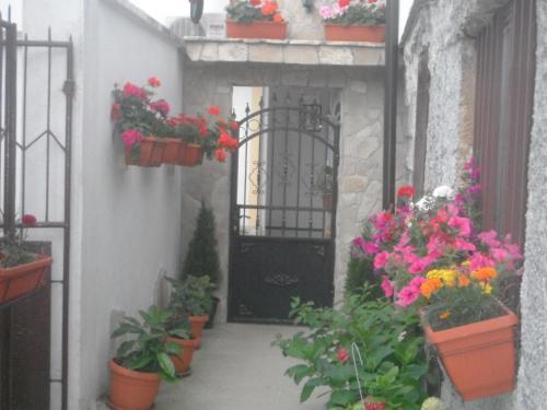 Hostel Miran Mostar