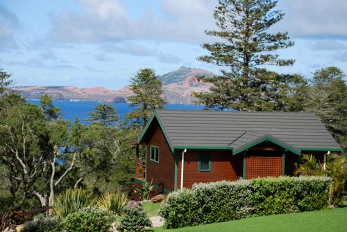 Coast Norfolk Island, Бернт-Пайн