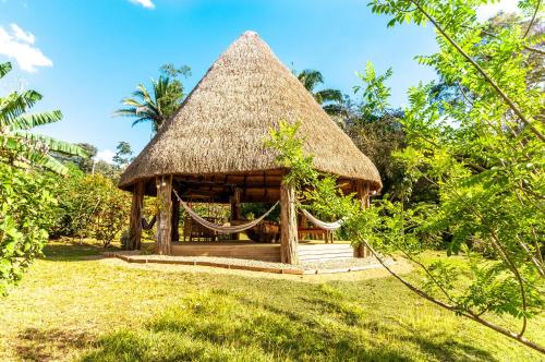 Dream Valley Belize