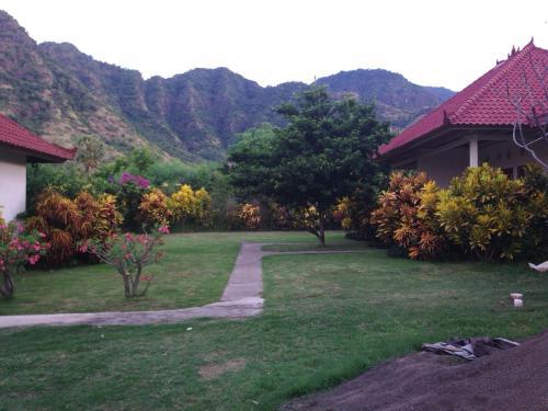 Отель Gunung Mas Pemuteran 1 звезда Индонезия
