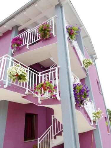 Apartments Villa Excellente Belvedere