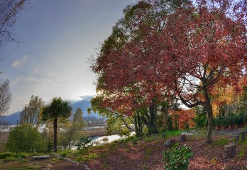 foto La Foresteria (Cossogno)