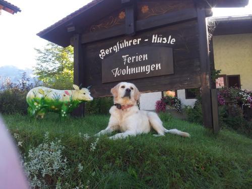 Bergführer-Hüsle