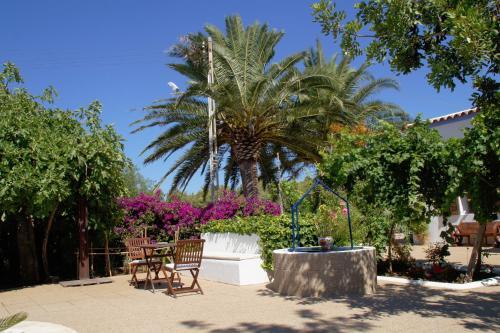 Sa Vinya d'en Palerm