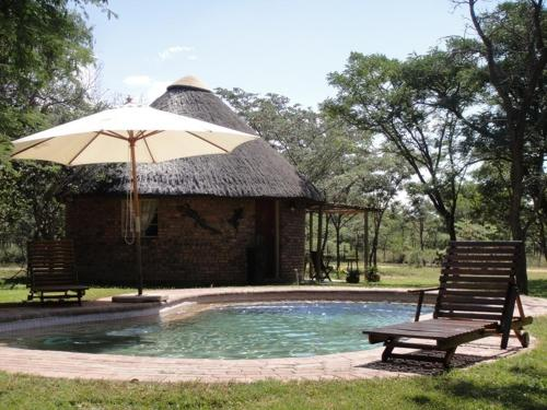Piscina Olievenhoutsrus Guest- and Game Farm
