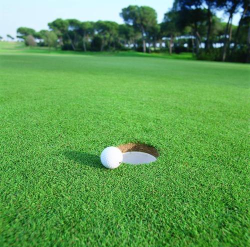 Zweibettzimmer mit Green Fee Hotel Nuevo Portil Golf 6