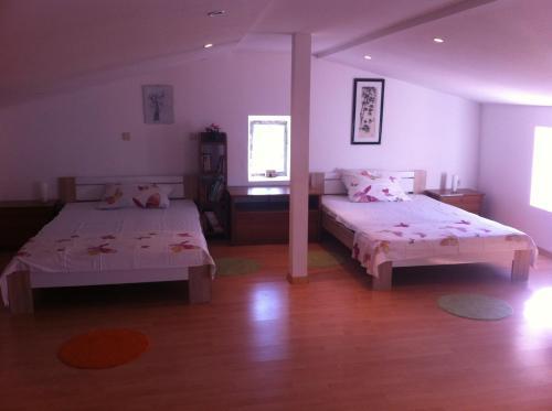 Apartment Fara