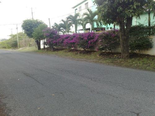 Belle Kaye, Cap Estate