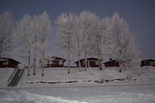 Picture of Saarituvat Cottages