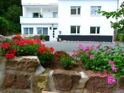 Отель Villa Luise 3 звезды Германия